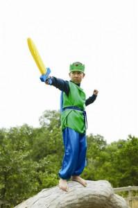 Knight's Costume from Sarah's Silks