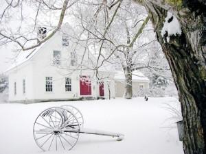 Winter in Maine - Bella Luna Toys