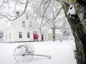 Winter in Maine - Bella Luna Toys