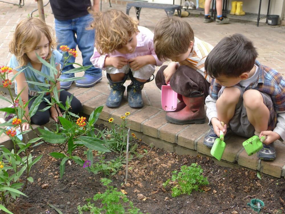 kids-urban-gardening